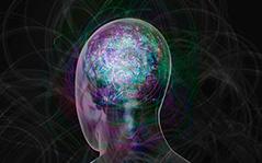 Gestalt-Terapia - Abordagem Clínica e Institucional